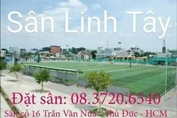 logo_Linh Tay